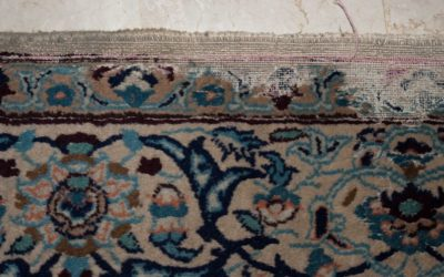 How can I tell if my rug has moths?